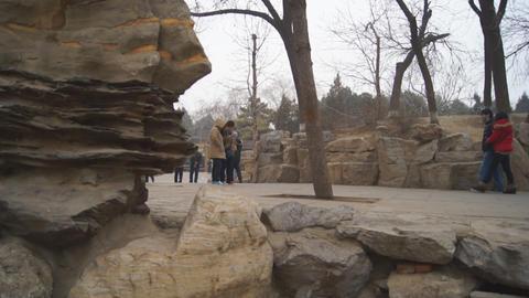 China Beijing Park Yuanmingyuan 02 Footage