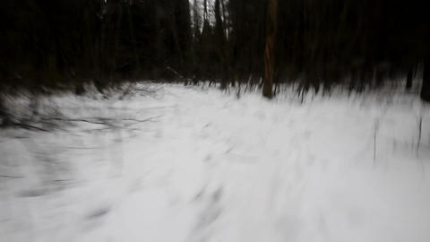 run away in panic on dark terrible winter forest Live Action