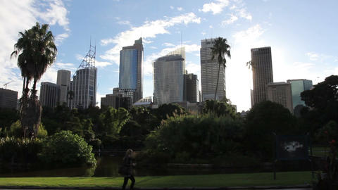 Skyline of Sydney with city central business distr Footage