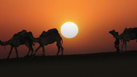 cameleers leading caravan of camels in desert - si Footage