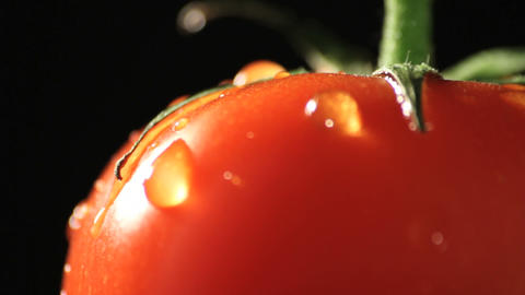 Tomato rotating Footage