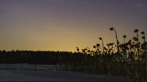 Twilight, then come the star. Time Lapse Footage