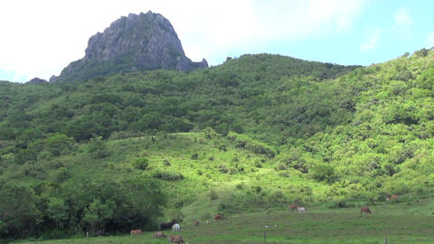 mountain of kenting national park,taiwan Live影片