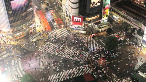 Tokyo, Japan ビデオ