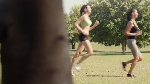 Two females exercising in park sequence Footage