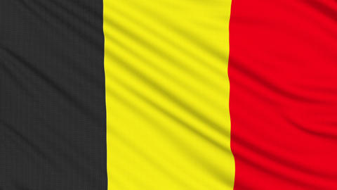 Belgian flag, with real structure of a fabric Animation