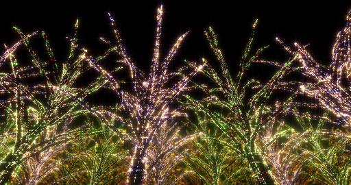 illumination tree neon 4k C 2 CG動画