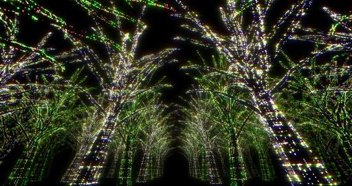 illumination tree neon 4k Dd 2 Animation