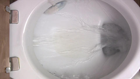 Flushing the Toilet Footage