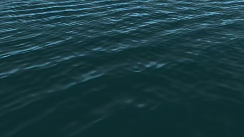 Blue Ocean Animation