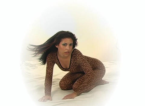 Sexy Young Woman in a Leopard Bodysuit, slow motio Footage