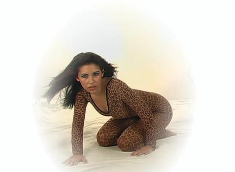 Sexy Young Woman in a Leopard Bodysuit, slow motio Stock Video Footage