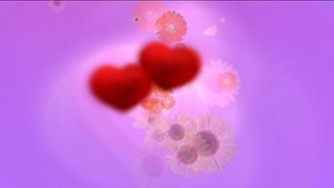 flower4 Stock Video Footage
