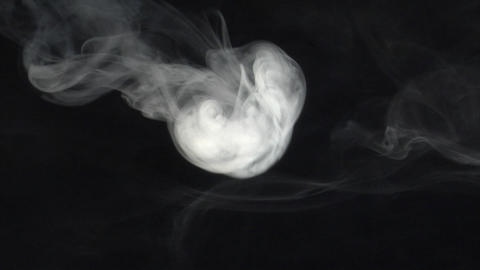 smoke series: single Smoke anemone Footage