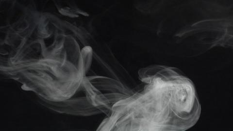 smoke series: single Smoke anemone Stock Video Footage