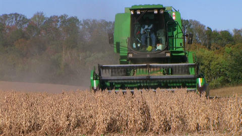 Combine Harvesting Soybeans 06 Stock Video Footage