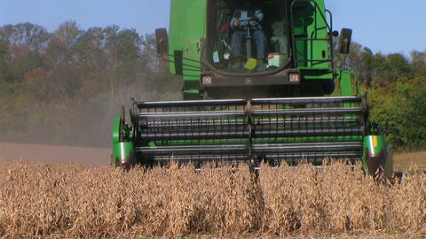 Combine Harvesting Soybeans 06 스톡 비디오 클립, 영상 소스, 스톡 4K 영상