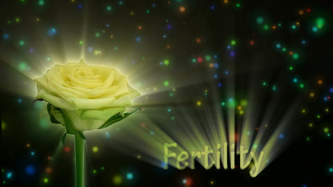 """Green rose """"Jade"""" color meaning """"Fertility"""" 1a alpha matte Stock Video Footage"""