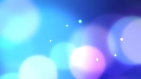 Neon light Focus C2 Animation