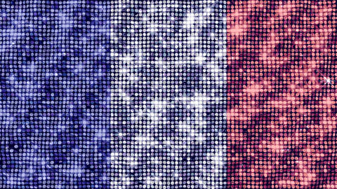 Spangle Flag France Animation