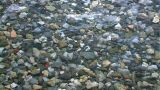 Beach Stones stock footage