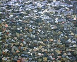 Beach Stones Stock Video Footage