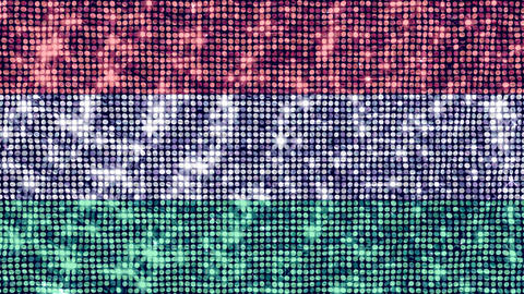 Spangle Flag Hungary Stock Video Footage