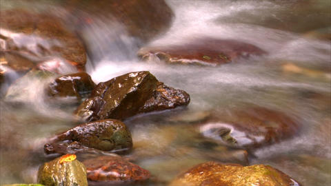 time lapse water flow close Stock Video Footage