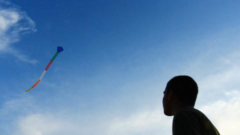 flying a kite Footage