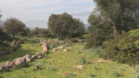 Mountain Biking, Sardinia, Italy Stock Video Footage