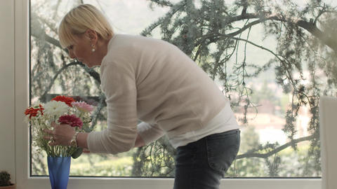 Senior Woman With Flowers At Home stock footage