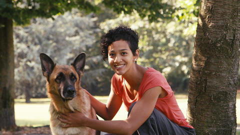 People Working As Dog Sitter with Alsatian Dog in park Stock Video Footage