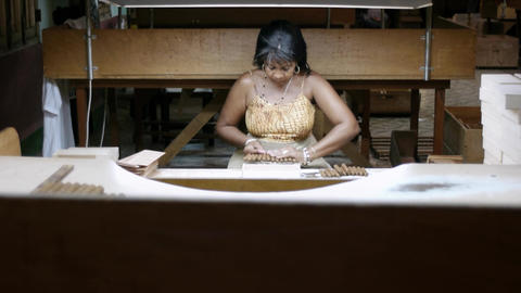 Cuban Woman Working in Cigar Factory in Havana Cub Footage