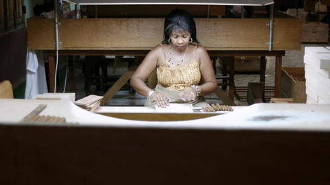 Cuban Woman Working in Cigar Factory in Havana Cub Stock Video Footage