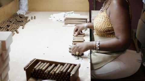 Tobacco Industry Cuban Lady in Cigar Factory in Ha Footage