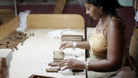 Tobacco Industry Cuban Lady in Cigar Factory in Ha Stock Video Footage