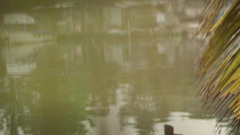 Senior Man Fishing on River Stock Video Footage