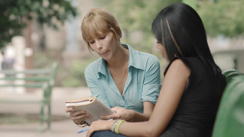 College Students Studying on Textbook in Park Stock Video Footage