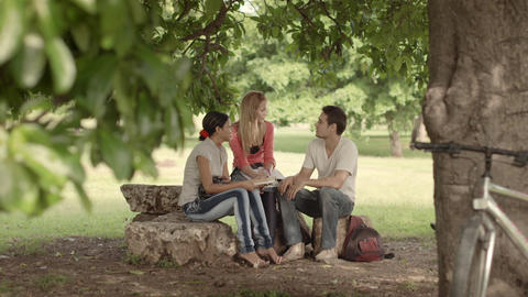 Group of Students Meeting and Studying in Park Stock Video Footage