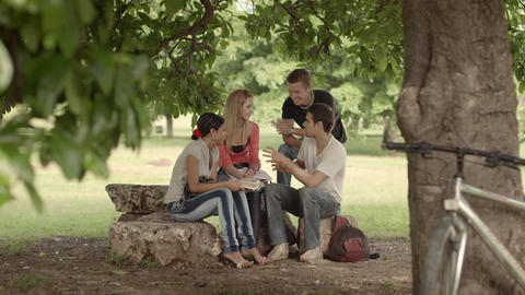 Group of Students Meeting and Studying in Park Footage