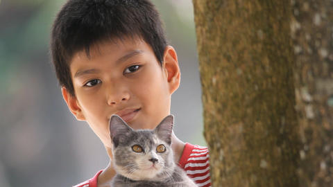 boy and cat peeking from Behind Tree Stock Video Footage