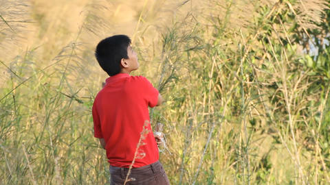 Young child is playing with kite Stock Video Footage