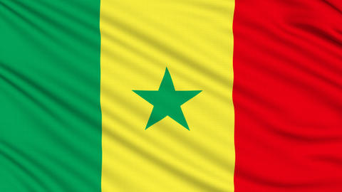 Senegalese flag, with real structure of a fabric Animation