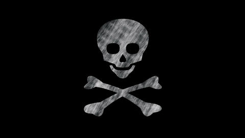 Jolly Roger stock footage