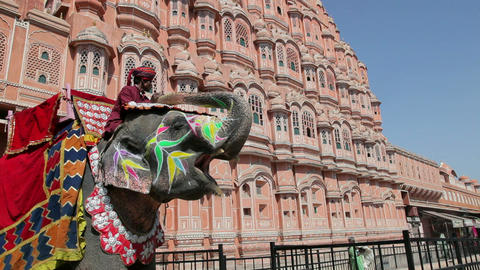 Ceremonial decorated Elephant outside the Hawa Mah Footage