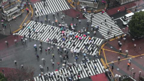Tokyo ビデオ