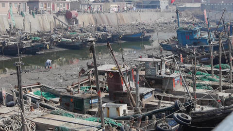boats in port,worker clean up the estuary mud Animation