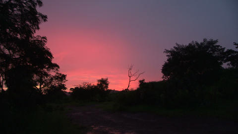 Night Falls - Dusk in Guinea Just After Sunset - F Footage
