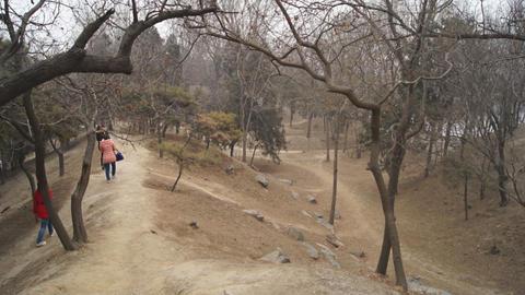 China Beijing Park Yuanmingyuan 25 Footage