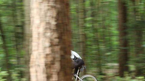Mountainbiker Im Wald stock footage